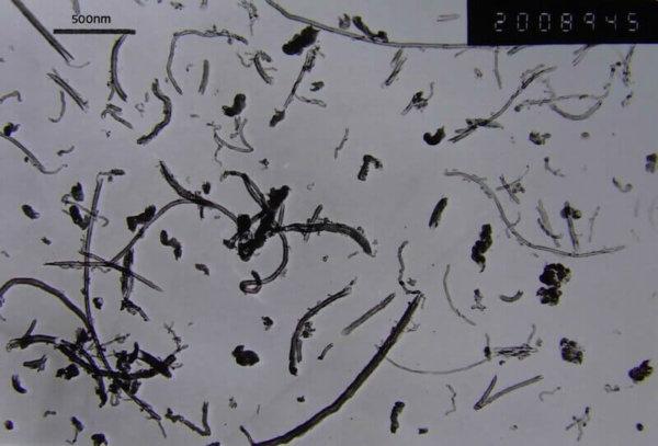 Short COOH Functionalized Multi Walled Carbon Nanotubes 30-50nm