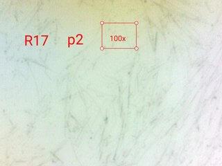 silver nanowires